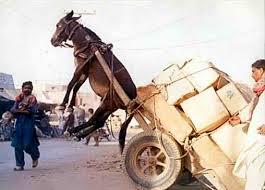 horse pulling overloaded cart