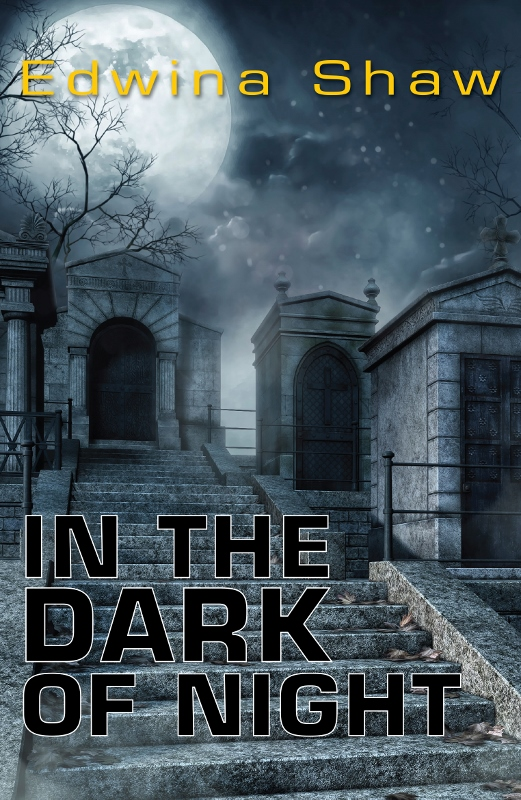 In the Dark of Night by Edwina Shaw